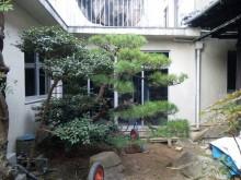 建物を解体跡が植栽のある駐車場に変更