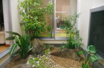 中庭の坪庭リフォーム  広島市 O邸