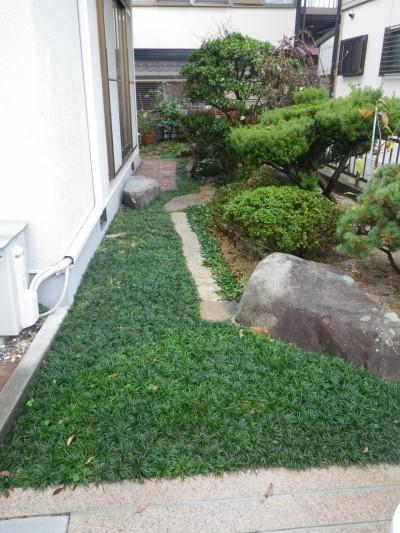 坪庭の完成