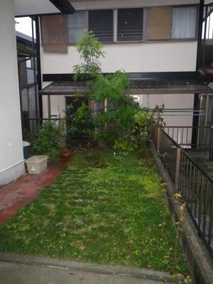 施工前の坪庭