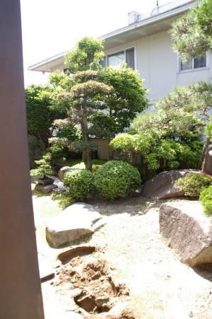 松を活かした和風のお庭