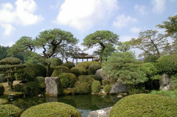 池のある庭園の剪定 北広島町 T会館様