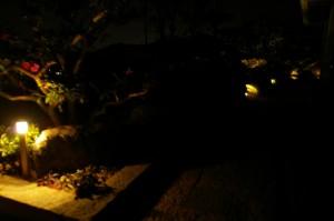 LEDライトで夜の足元も安心。モッコクの樹があるお庭